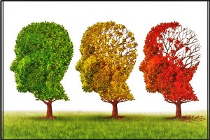 alzheimers-disease-and-cannabis-oil